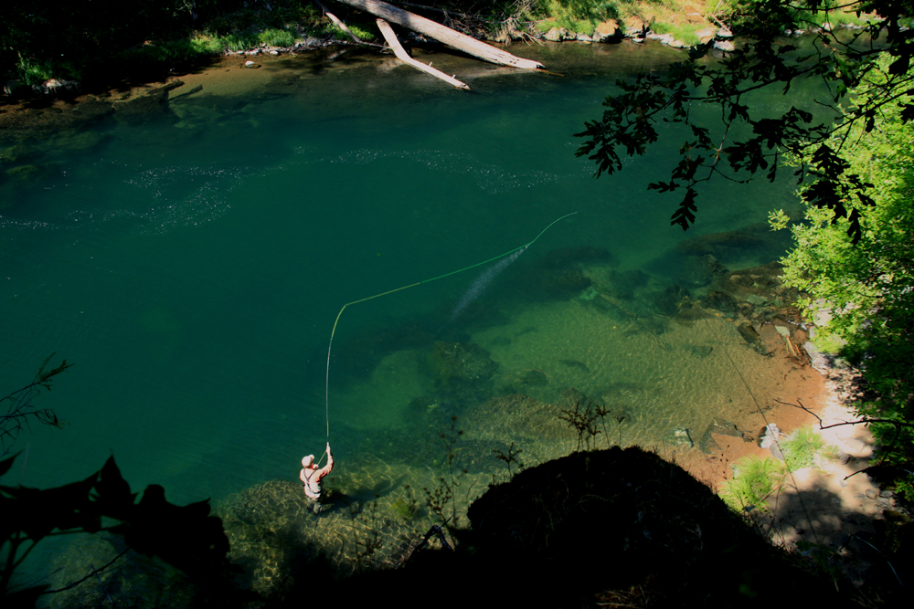 North Umpqua River, Legendary Steelhead Water