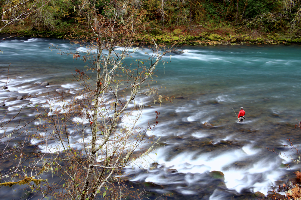 Pondering – North Umpqua, OR