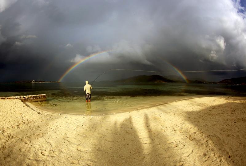 Honduras Rainbow